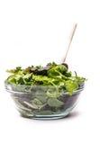 与芝麻菜的新鲜的沙拉 免版税库存照片