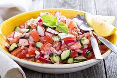 与芥末选矿的新鲜蔬菜沙拉 免版税库存图片