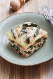 与芦笋三文鱼和besciamella乳酪的意大利烤宽面条 库存图片