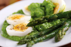 与芦笋奶油的煮沸的鸡蛋  免版税库存照片