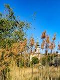 与芦苇和教会的风景 免版税库存照片