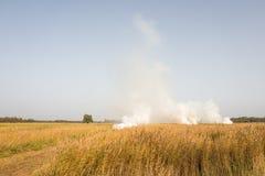 与芦苇燃烧和抽烟的Landcape领域 库存图片