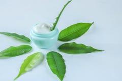 与芦荟维拉的有机自然奶油在一个绿色瓶子 库存照片