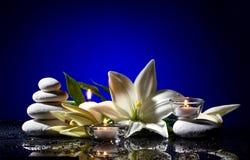 与花、石头和蜡烛的温泉静物画 库存图片