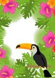 与花、toucan的植物和的鸟的热带框架 您的设计的夏天花卉模板 异乎寻常的背景 向量 免版税库存图片