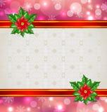 与花一品红的圣诞节典雅的卡片 免版税库存图片
