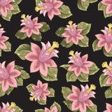 与花传染媒介的无缝的样式 免版税库存图片