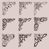 与花卉元素的汇集葡萄酒装饰角落设计的 库存例证