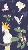 与花卉样式的背景与feijoa开花的花 库存例证