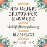 """与花卉自然的书法向量字体编号""""&""""号,并且标志开花手拉的字母表字法 库存照片"""