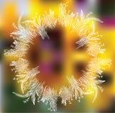 与花卉花圈的抽象背景 库存图片