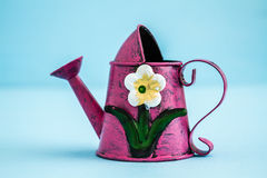 与花卉设计的五颜六色的金属喷壶 库存图片