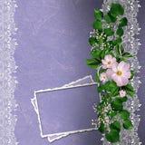 与花卉边界和看板卡的淡紫色背景 库存图片