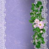 与花卉边界的淡紫色背景 免版税库存图片