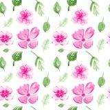 与花和叶子的无缝的样式 皇族释放例证