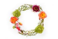 与花和叶子的花卉圆的冠花圈 平的位置, t 库存图片