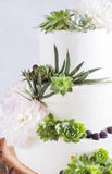 与花和多汁植物的典雅的婚宴喜饼 库存照片