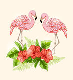 与花和桃红色火鸟的背景 免版税图库摄影