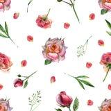 与花和桃红色瓣的水彩无缝的样式 库存例证