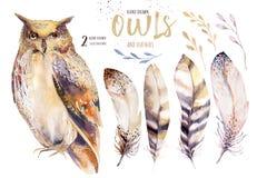 与花和羽毛的水彩猫头鹰 与鸟的手拉的被隔绝的猫头鹰例证在boho样式 苗圃 皇族释放例证