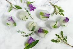与花和草本的明亮的冰块在轻的大理石背景 图库摄影