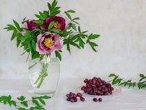 与花和葡萄的静物画 桃红色和紫色牡丹在一个花瓶在明亮的背景 免版税图库摄影