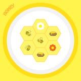 与花和蜂的五颜六色的背景 免版税库存图片