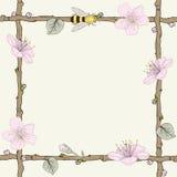 与花和蜂的枝杈框架 免版税图库摄影