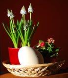 与花和鸡蛋的东部静物画 免版税库存图片