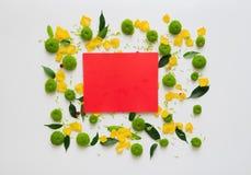 与花圈框架的红色纸从花 库存照片