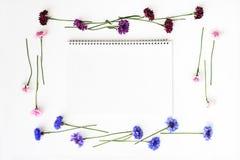 与花圈框架的纸从在白色背景的野花 库存照片