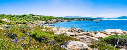 与花岗岩岩石的美丽的costline和在波尔图Pollo,撒丁岛,意大利的惊人的天蓝色的水 免版税库存图片