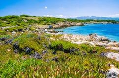 与花岗岩岩石的美丽的costline和在波尔图Pollo,撒丁岛,意大利的惊人的天蓝色的水 免版税库存照片