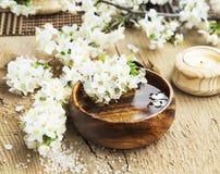 与花开花的温泉设置在木水碗 免版税图库摄影