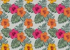 与花木槿棕榈monstera le的热带无缝的样式 免版税图库摄影
