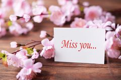 与花桃红色的贺卡与爱礼物为华伦泰` s天母亲` s天 免版税图库摄影