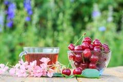 与花梗的红色成熟樱桃果子在玻璃碗和茶 免版税图库摄影