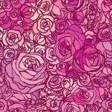 与花玫瑰的无缝的样式,导航花卉例证 库存图片