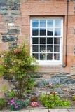 与花的一个窗口 免版税库存图片