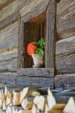 与花的一个老木窗口 免版税库存照片