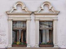 与花的两个被打开的窗口 免版税库存图片