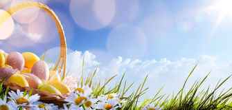 与花的五颜六色的复活节彩蛋在蓝色的草 库存照片