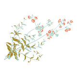 与花的五颜六色的植物的手拉的分支,他 库存照片