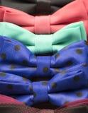 与花的五颜六色的蝶形领结 免版税库存图片