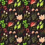 与花的传染媒介无缝的背景 免版税库存图片