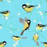 与花的北美山雀样式 免版税库存图片