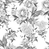 与花的单色无缝的样式 罗斯 Bromeliad 额嘴装饰飞行例证图象其纸部分燕子水彩 免版税图库摄影