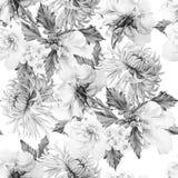 与花的单色无缝的样式 Hrysanthemum 冬葵 罗斯 额嘴装饰飞行例证图象其纸部分燕子水彩 免版税库存照片