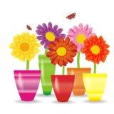 与花的可爱的背景 库存图片