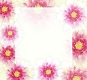 与花的向量五颜六色的背景 EPS10 免版税库存照片